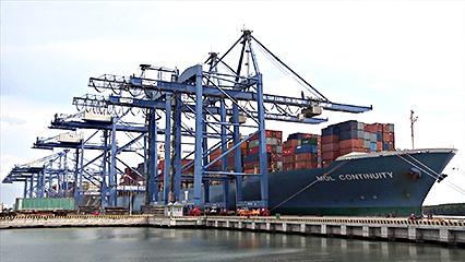 Cụm cảng Cái Mép – Thị Vải duy trì đà tăng trưởng ấn tượng